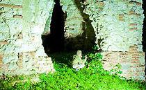 Ruiny zamku w Buchawie