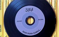 Dwie płyty Szeli dla Fspieram24.org